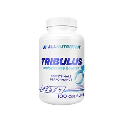 Tribulus terrestris supporta i livelli di testosterone