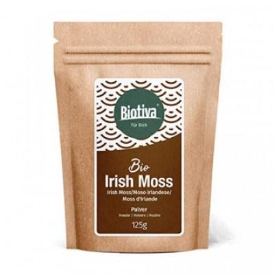 Muschio irlandese Irish moss