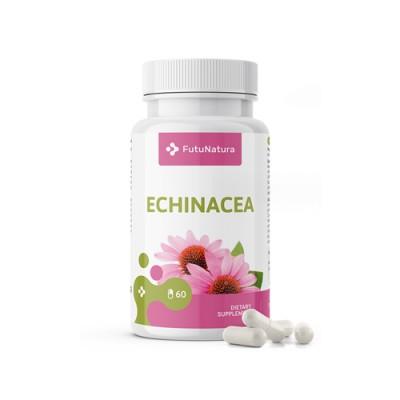 Echinacea purpurea capsule