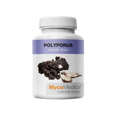 Polyporus funghi