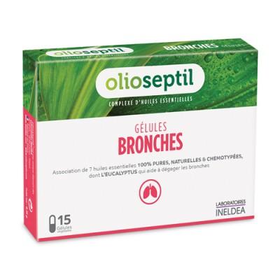 polmoni bronchi